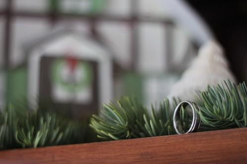 293/365 12/18/2011 Ring