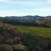 Charmlee County Regional Park in Malibu