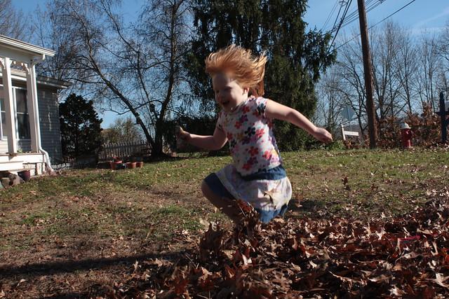 Rake the leaves. Jump in the leaves.