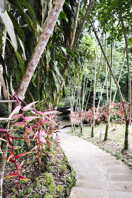 Magic Garden - Thailand, Koh Samui (12 of 42)