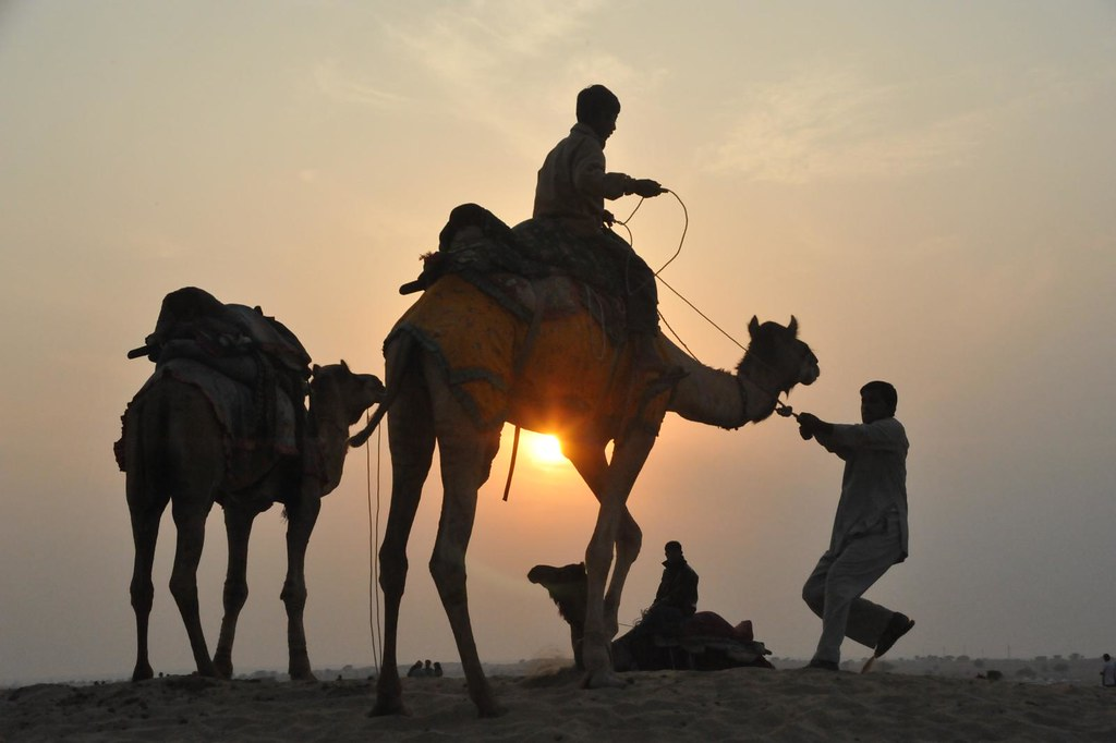 silhouette : Let us get going! Jaisalmer, Rajasthan, India