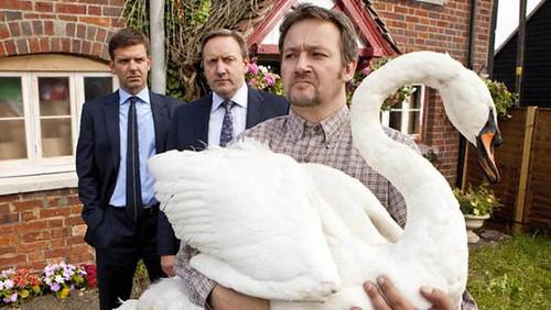 Midsomer Murders, A Rare Bird