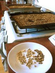 roasting malted barley - 2