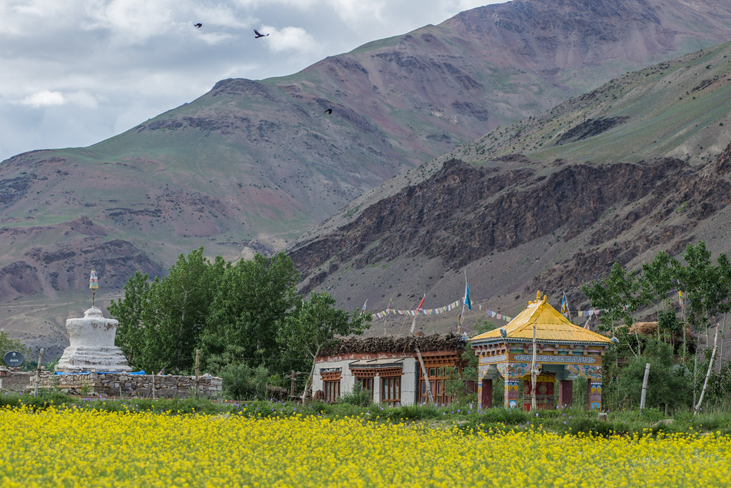 SaniVillagePadumZanskar_045