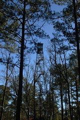 McCormick Fire Tower
