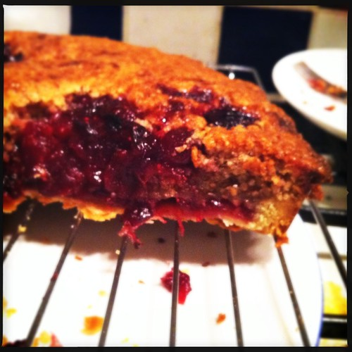 365:16 Sour cranberry bakewell