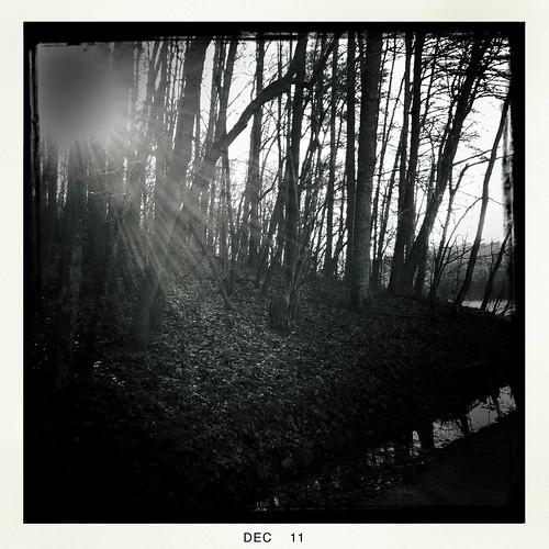 Salem Lake Walk