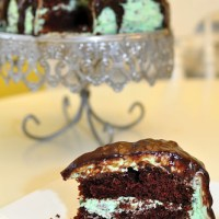 Chocolate Cake with Mint Chocolate Chip Frosting {Crazy Cooking Challenge}