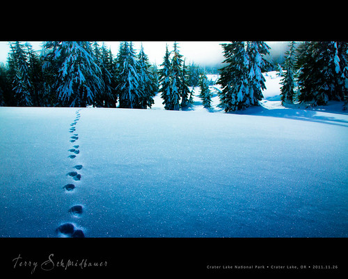 Snowshoe Hike by Terry Schmidbauer