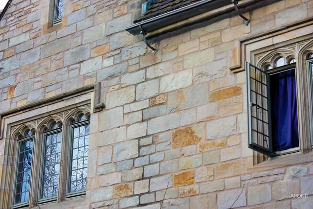 Yale Curtain2