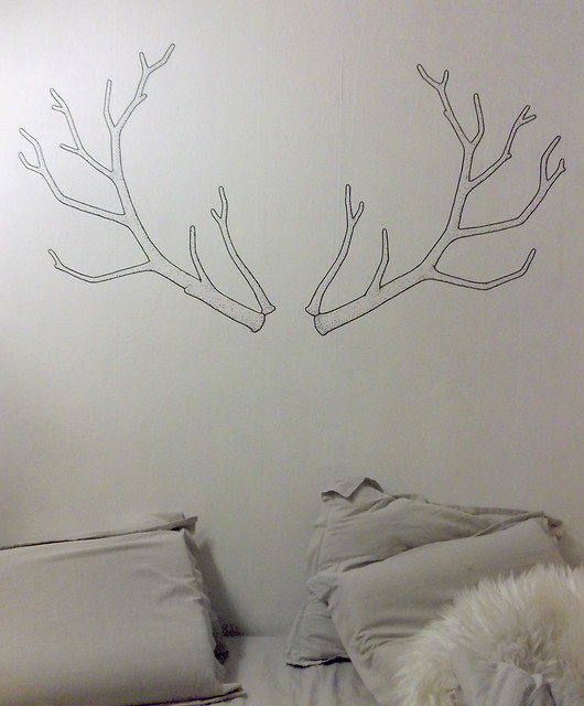 Resolution antlers