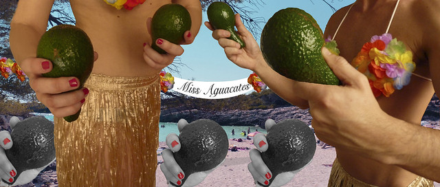 Miss Aguacates