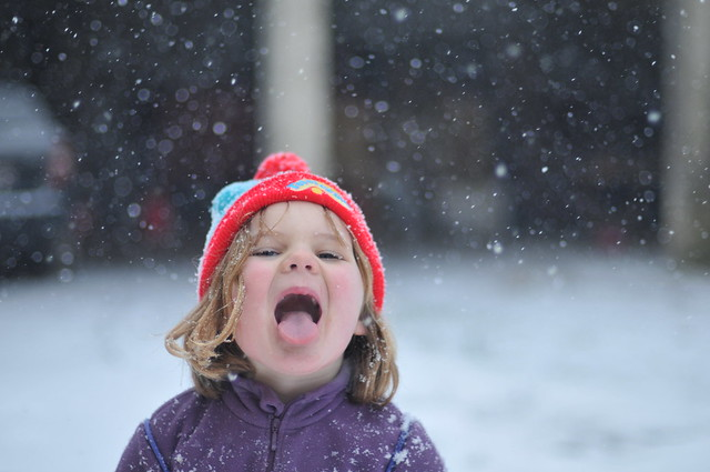minty catching snowflakes