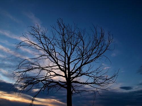 Blue sunset by mikekemp_f5