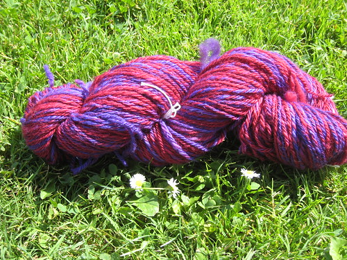 2011_10_Spinning_RoyalHare_purplered