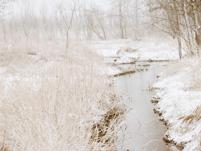 snowy_3
