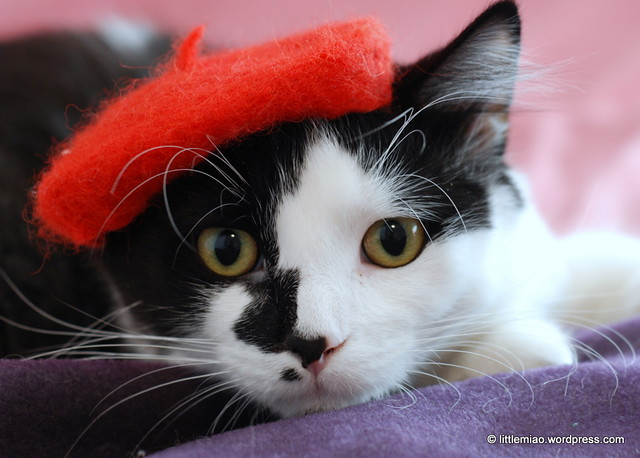 red beret 2-5-2012 3-13-06 PM