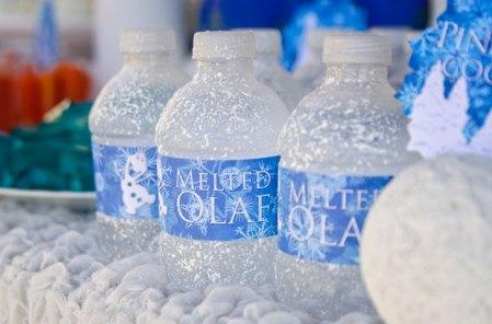 Frozen-water-bottles-melted-olaf
