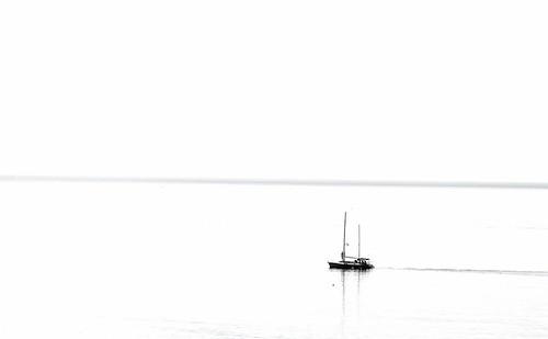 White Sun ~ MjYj by MjYj