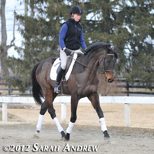 Tiffany Catledge and Solidify: Retired Racehorse Training Project's Trainer Challenge