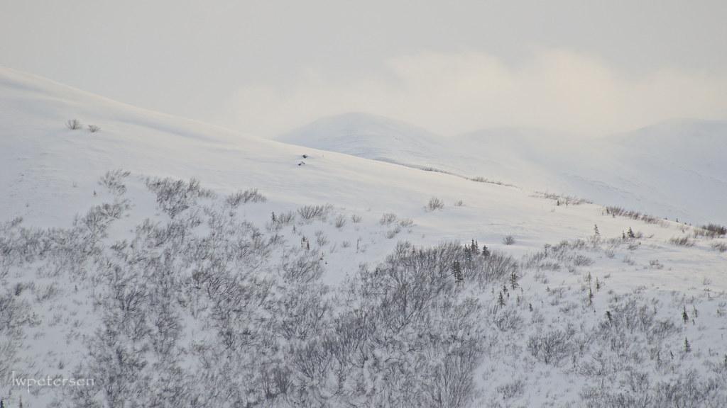Low-grade-snow
