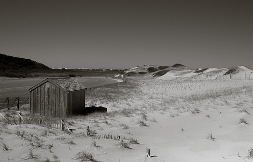 The last hut on the left by dogfrog