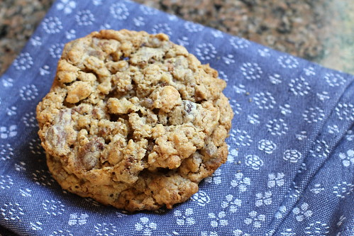 oatmeal nut chocolate chunk cookies