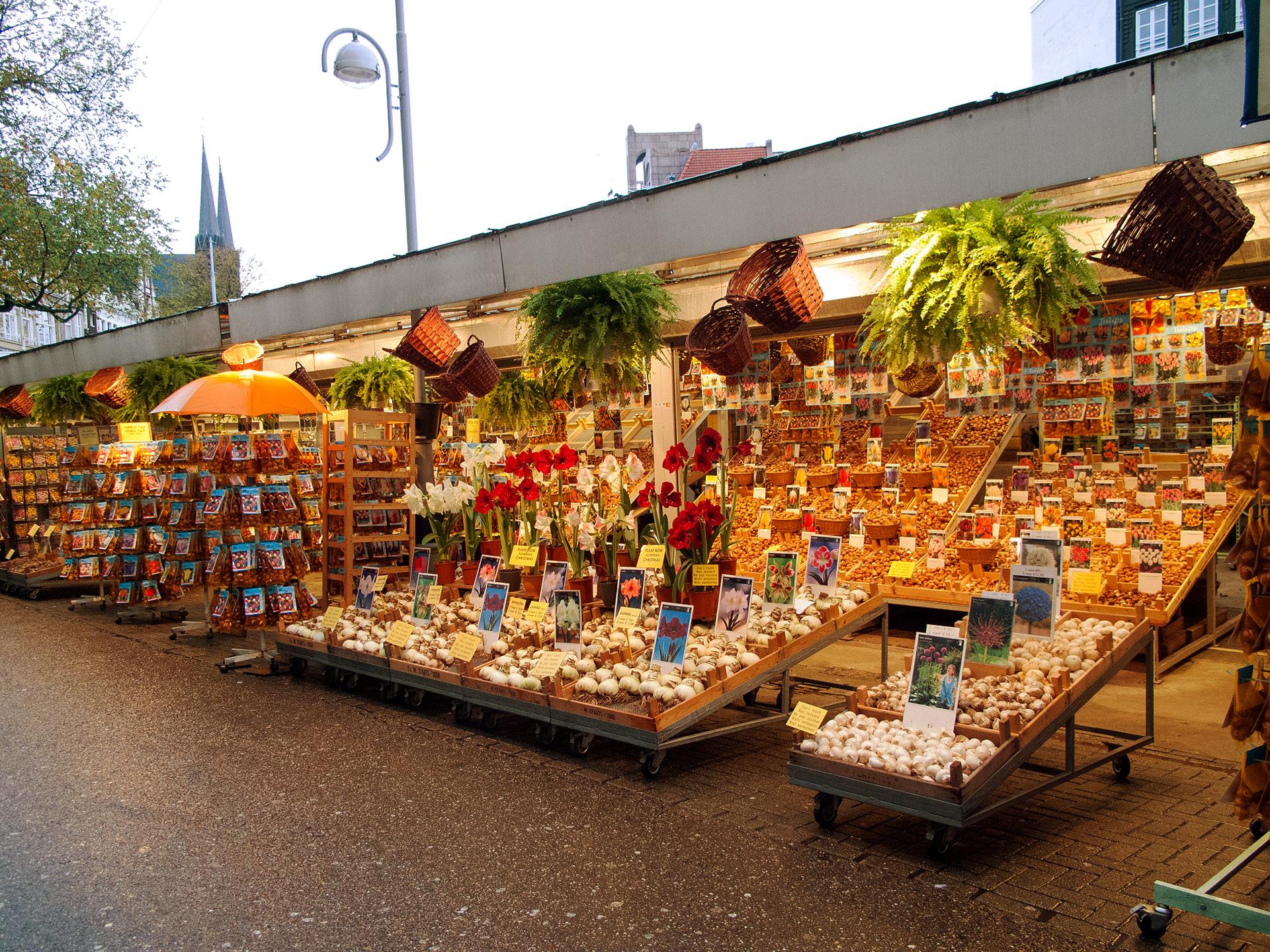 Flower Market, Amsterdam.