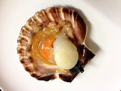 Scallop in half-shell