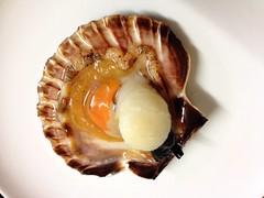 Scallop in half-shell