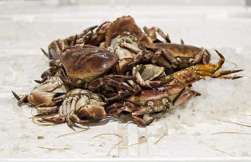 Crab Wrestling
