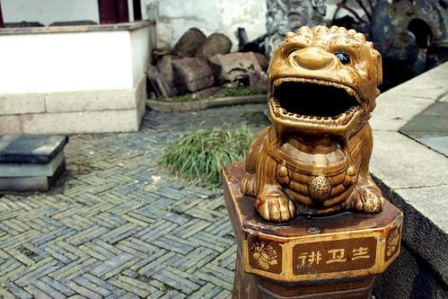 Dragon-dog