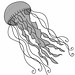 jellyfishgrey