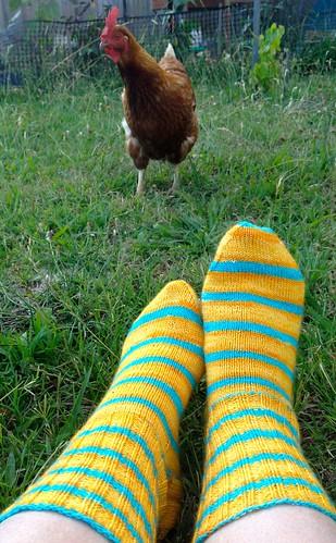 sunshine socks