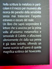Prigioni e paradisi, di Colette, Del Vecchio editore 2012; Grafica e impaginazione di Dario Lucarini, disegno di cop.: Luigi Cecchi. risvolto di copertina (part.), 4