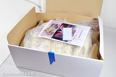 Resin Kit 1 100 Nightingale New Haul Super-G Unboxing Photos (4)