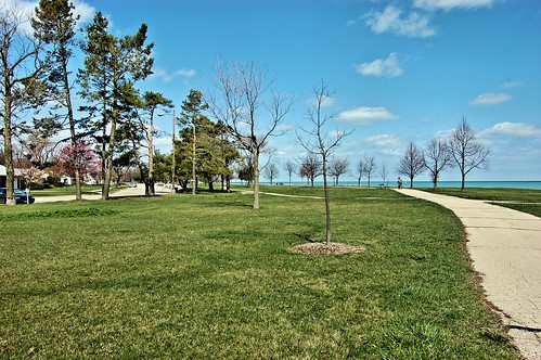 View of path by lake in park