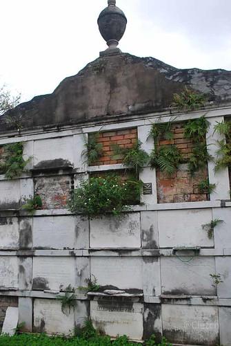 Tumbas comidas por la maleza en el cementerio de Lafayette nº 1, New Orleans