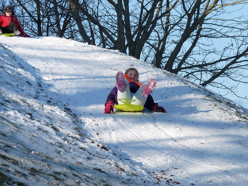 Sledding at the Burcht
