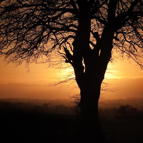 Sunset's return