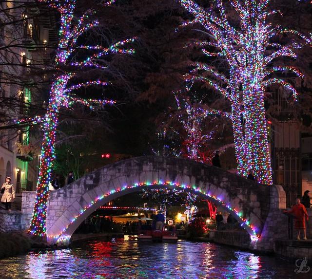 Selena's Bridge