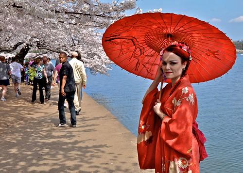 White Blossoms, Red Kimono