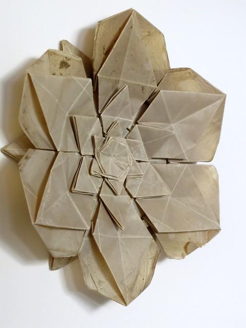 bio-paper star twist