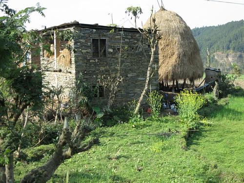 Farm scene on the way to Pokhara, Nepal