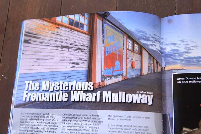 My Latest article for W.A.F.M (West Australian fishing magazine)