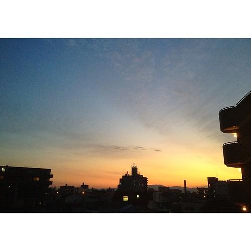 最近、朝玄関を開けた景色が最高に綺麗なんですよ! どうぞご覧あれ!ヾ(๑╹◡╹)ノ