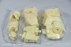 Resin Kit 1 100 Nightingale New Haul Super-G Unboxing Photos (15)