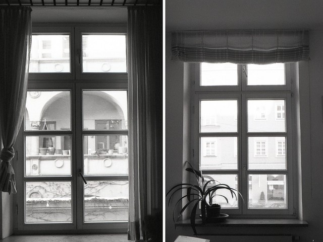 windows diptych