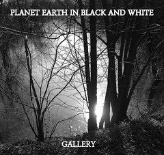 PLANET EARTH IN BLACK AND WHITE group now has its own gallery. New updates as time goes on.