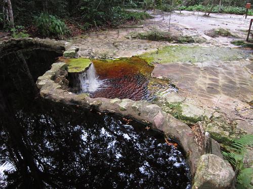 18/2/2012 - Piscinas naturais (Rio Tarumã/AM)